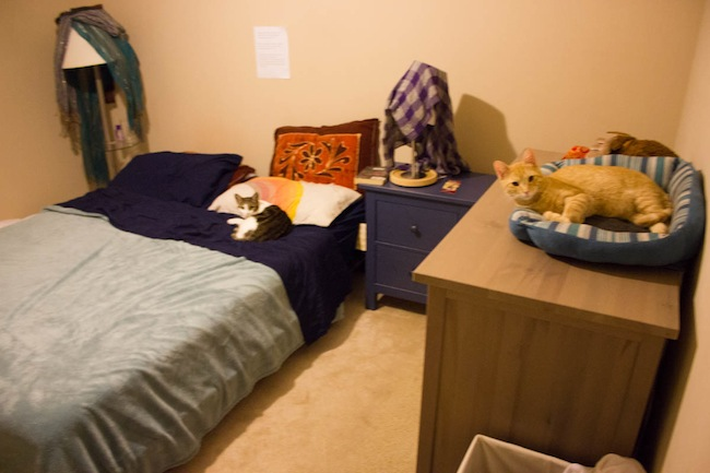 Our bed in Durham, NC.