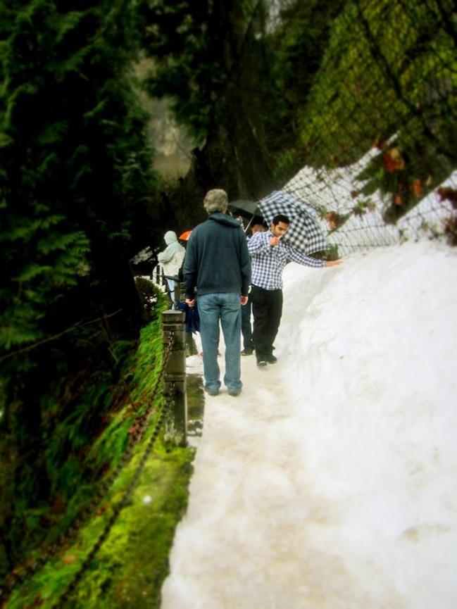 multnomah falls oregon10