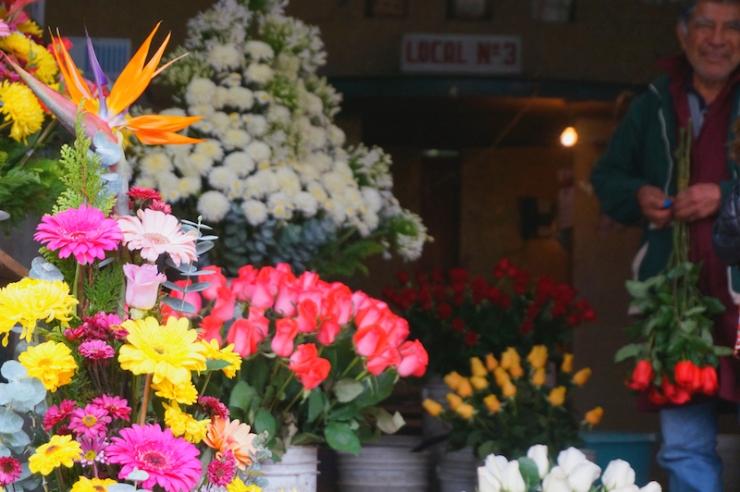 mexico city flowers1