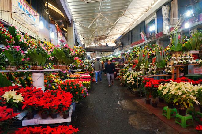 mercado de jamaica mexico22