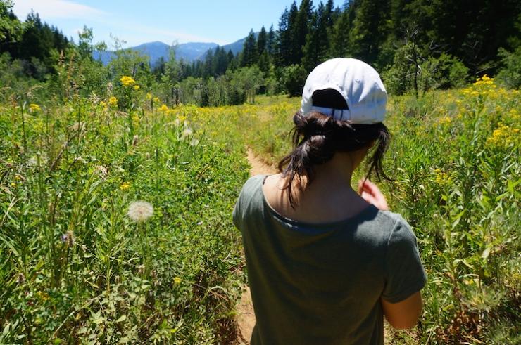 Jardine Juniper Trail in Logan Canyon, Utah
