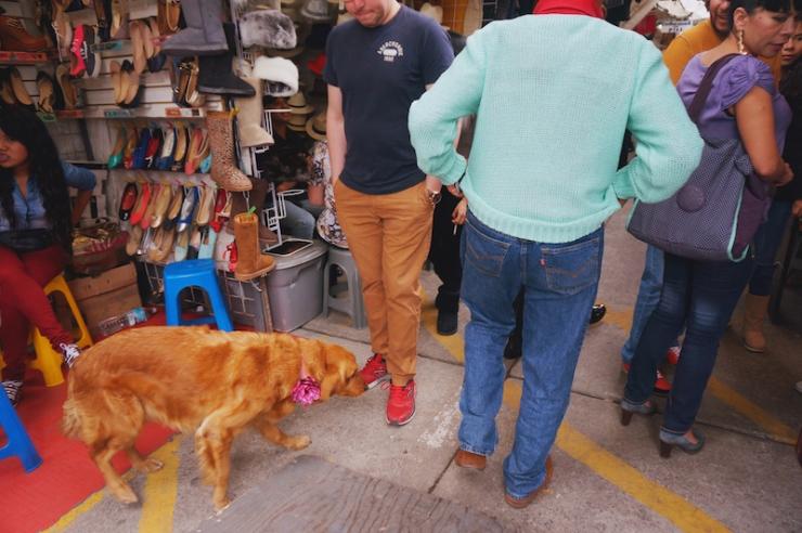 mexico city roma mercado