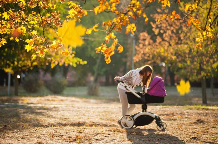 autumn-fall-stroller