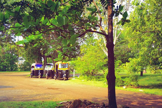 india2015 rickshaws