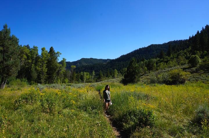 juniper trail logan