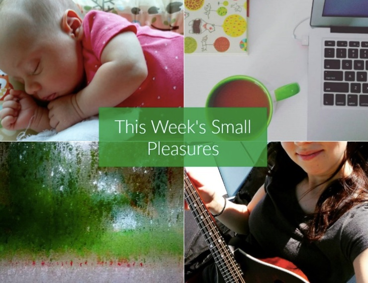 weekly small pleasures 125