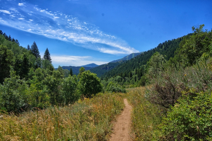 Jardine Juniper Trail in Logan Canyon, Utah
