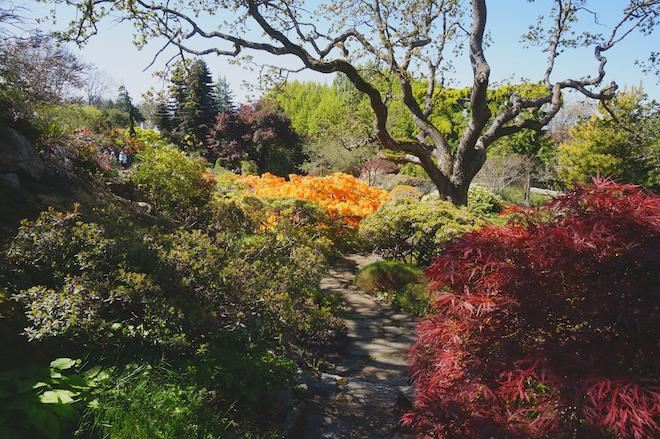 abkhazi garden victoria bc17