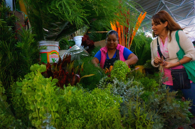 mercado de jamaica mexico10