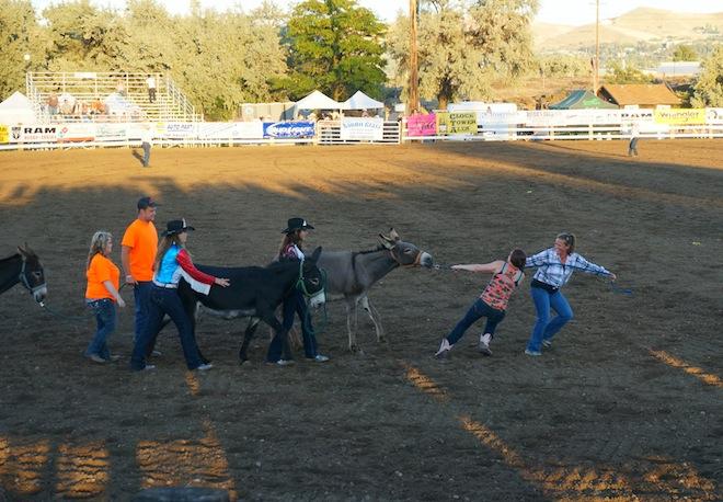 the dalles oregon rodeo29