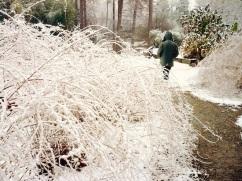 duke gardens durham snow1