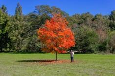 Fall!