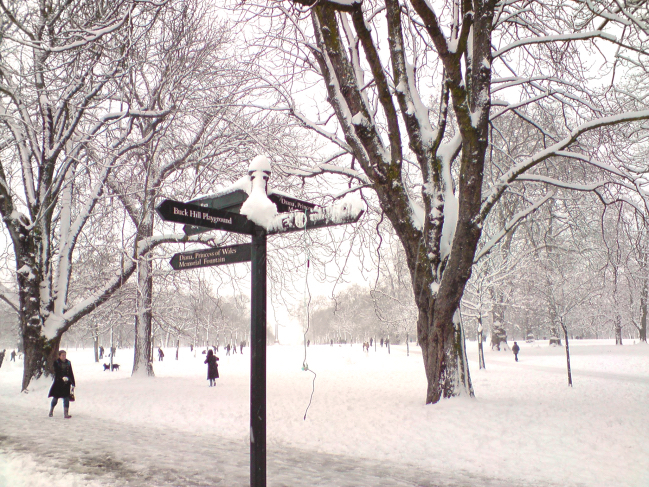 Hyde Park during winter