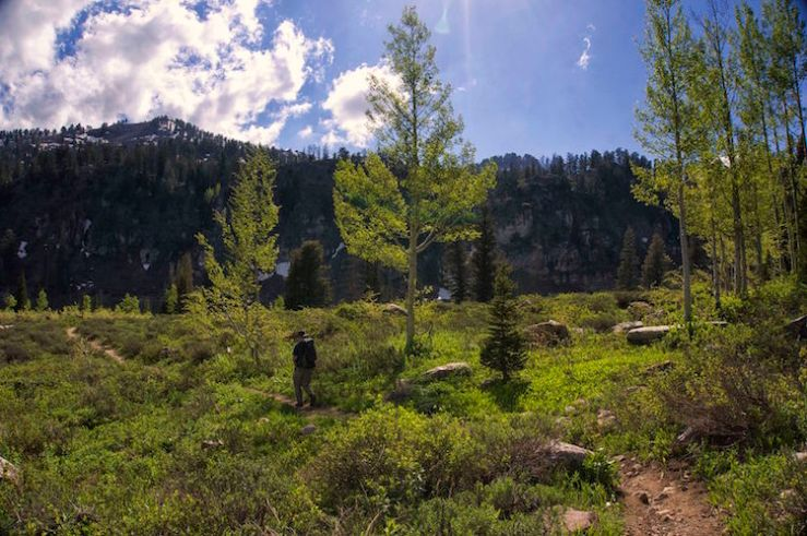 Hiking The White Pine Lake Trail in Logan Canyon, Utah