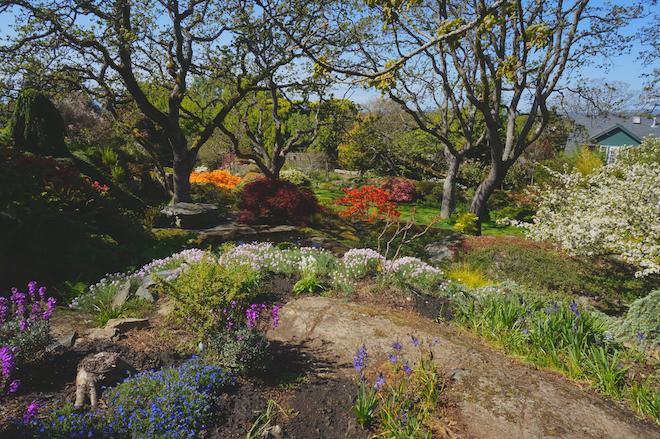 abkhazi garden victoria bc19