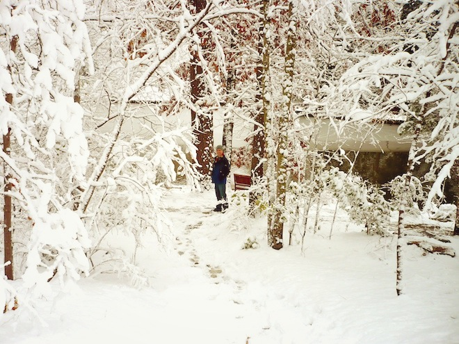 duke gardens durham snow8