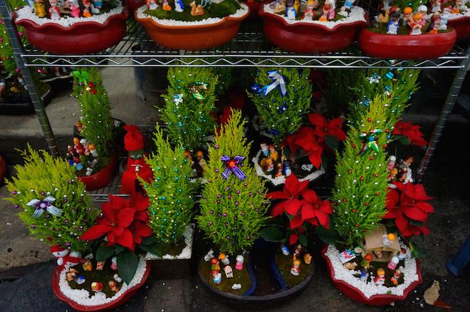 mercado de jamaica mexico14