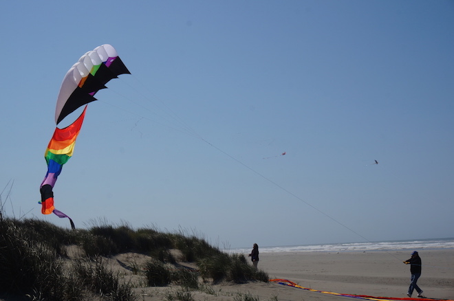 Long Beach, Washington kites